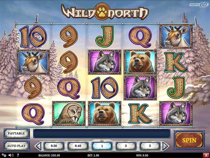 Ignition casino poker bonus codes