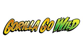 Slot Focus - Gorilla Go Wild