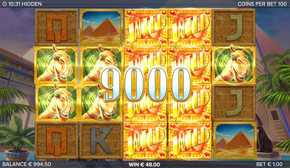 Hidden Slot - Big Win