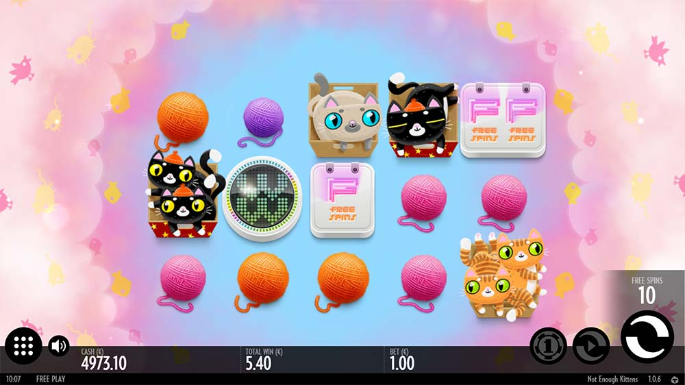 Not Enough Kittens Slot - Bonus Trigger