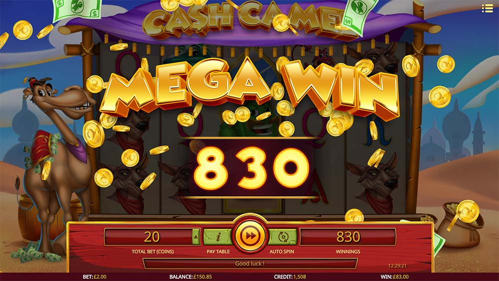 Cash Camel Slot - Mega Win