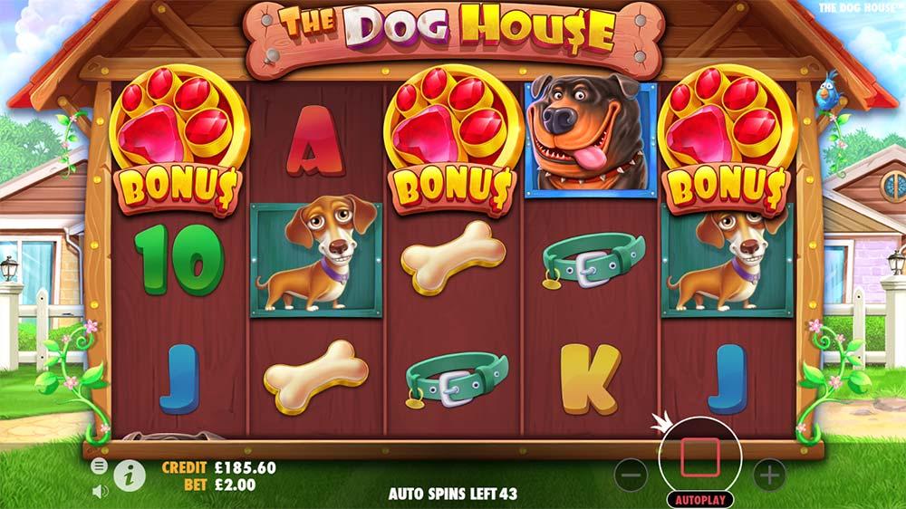 The Dog House Slot - Bonus Triggered